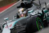 Lewis Hamilton Campeón del Mundo_8