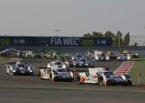Webber-Campeón-2