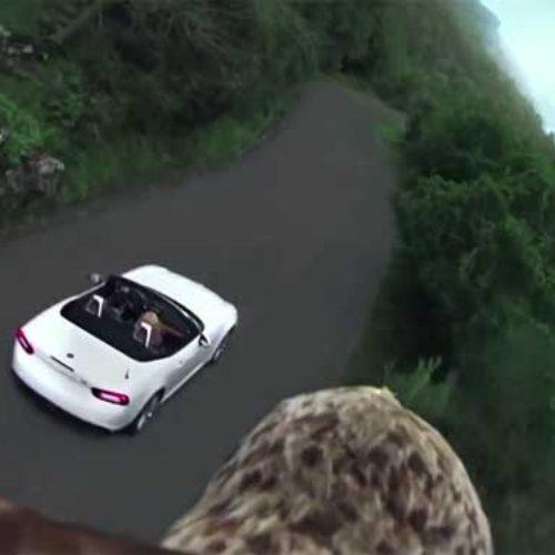 Vídeo del Fiat 124 Spider, máxima libertad