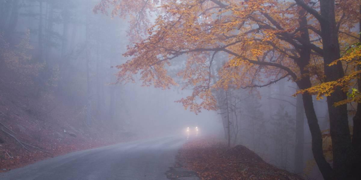 ¿Cómo conducir con niebla? Aprende a circular seguro