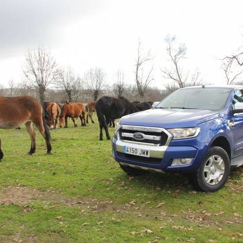 Ford Ranger 2.2 TDCi 160 CV Limited, a prueba: sin miedo a nada