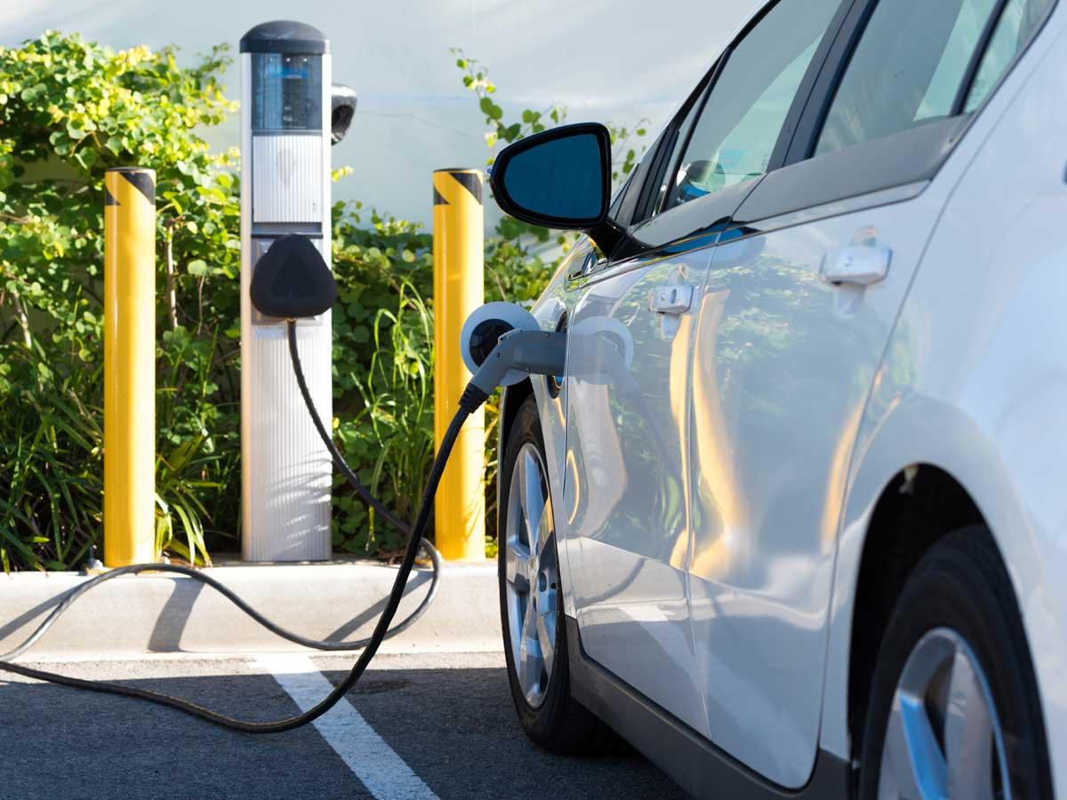 gasolina y diésel