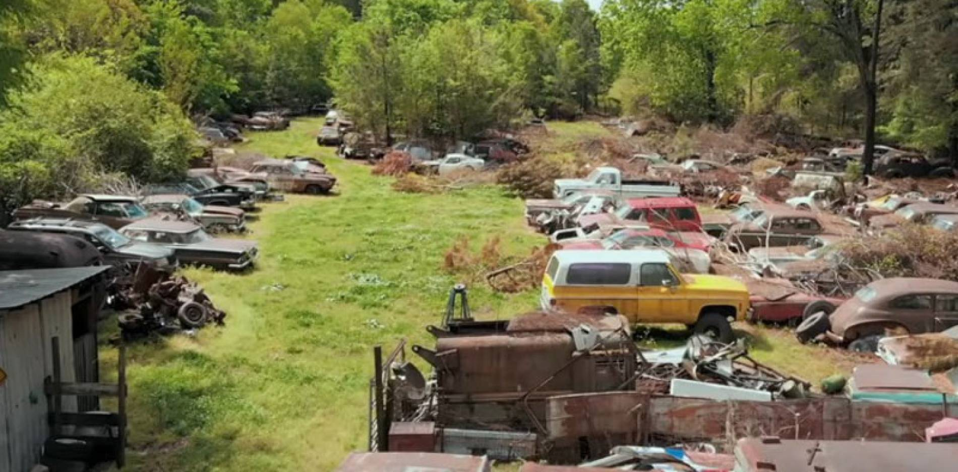 Encuentran una colección de 80 coches clásicos de alto valor abandonados en un bosque