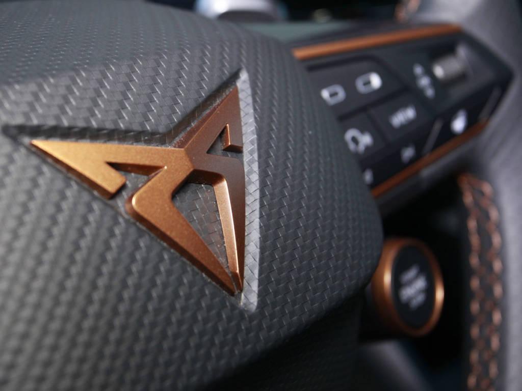 Detalle del logo en el volante multifunción.